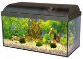 Оборудван аквариум HAGEN ELITE 60, 54 литра