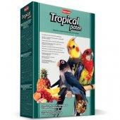 Padovan Tropical Patee - Тропически плодове за папагали
