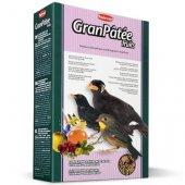 Padovan GranPatee fruits - Храна за насекомоядни птици с плодове