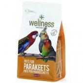 Padovan Wellness PATEE - Премиум храна за средни папагали