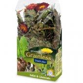 JR Farm Беззърнена храна за гризачи с градински чай и глухарче, 100гр