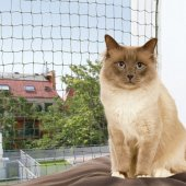 Trixie Предпазна мрежа за тераса - 8 x 3 метра, с метална нишка