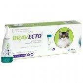 Bravecto Spot On за котки с тегло от 6.25 до 12.5 кг - 1 пипета