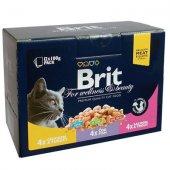 КОТКИ | Храна за котки | Brit Cat Premium Pouches Plate Family - 12 пауча x 100 гр