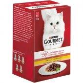 Gourmet Mon Petit, Асортимент ПТИЧЕ, 6 пауча