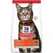 Hills Cat Adult Lamb, с агне и ориз, за котки от 1 до 6 години