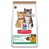 КОТКИ | Храна за котки | Hills Cat NO GRAIN Kitten Chicken - с пиле, без зърнени