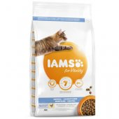 Iams Cat Adult Dental с пилешко - храна за зъбна хигиена