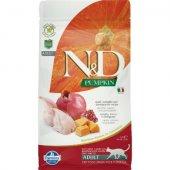 N&D Cat Adult Pumpkin - с пъдпъдък и нар