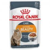 КОТКИ | Храна за котки | Royal Canin Intense Beauty - пауч за красива козина и здрава кожа