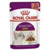 КОТКИ |  | Royal Canin Cat Sensory Smell с риба - 12 пауча