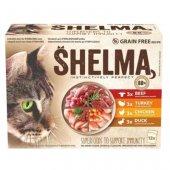 Shelma Cat Паучове за котка, 12x85гр