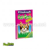Котешка трева Vitacraft, семена, 50гр