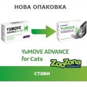 Lintbells YUMOVE ADVANCE Cat - Хранителна добавка за стави, 60 таблетки