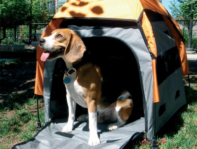 dog_outdoor_tent_popup.jpg