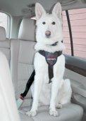 CLIX Нагръдник за куче за кола L - регулируем