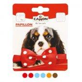 Camon Папийонка за куче - има различни цветове