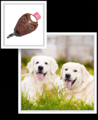 TickLess Ultrasonic Tick and Flea Repeller for Pets