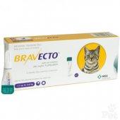 Bravecto Spot On за котки с тегло от 1.2 до 2.8 кг - 1 пипета
