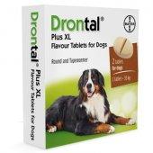 Bayer Drontal XL - обезпаразитяващи таблетки за кучета, 2 таблетки