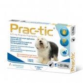 Prac-tic - 3 броя пипети за кучета с тегло от 22 кг. до 50 кг