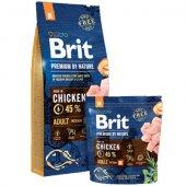 КУЧЕТА | Храна за кучета | Brit Premium Adult M