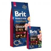 КУЧЕТА | Храна за кучета | Brit Premium Senior L,XL - за възрастни кучета