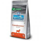 Farmina Vet Life Dog Convalescence - за хранително възстановяване и оздравяване