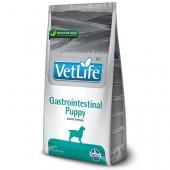 Farmina Vet Life Dog Gastrointestinal PUPPY - храносмилателни разстройства при малки кученца