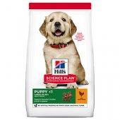 КУЧЕТА   Храна за кучета   Hills Dog Puppy Large Breed Chicken - с пиле, за малки от едри породи