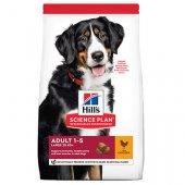 КУЧЕТА | Храна за кучета | Hills Dog Adult Large Breed Chicken - с пиле, за едри породи