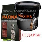 КУЧЕТА | Храна за кучета | Maxima Medium Adult - 14 кг с подарък Контейнер