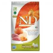 N&D Adult Mini Pumpkin - с глиган и ябълка