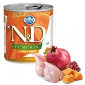N&D Dog с пъдпъдък и тиква, консерва 285гр
