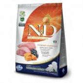 N&D Puppy Medium & Maxi Pumpkin - с агне и боровинки  - 12 кг