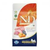 N&D Adult Mini Pumpkin -  с агне и боровинки
