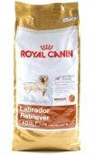 КУЧЕТА | Храна за кучета | Royal Canin LABRADOR Retriever Adult