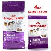 КУЧЕТА   Храна за кучета   Royal Canin Giant Adult - 15кг + 4кг БЕЗПЛАТНО