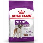 КУЧЕТА | Храна за кучета | Royal Canin Giant Adult - за кучета от гигантските породи