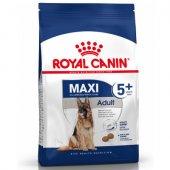 КУЧЕТА | Храна за кучета | Royal Canin Maxi Adult +5 - за възрастни кучета от големите породи