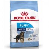 КУЧЕТА | Храна за кучета | Royal Canin Maxi Puppy - храна за малки кученца от големите породи