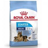 Royal Canin Maxi Starter - за кученца под 2 месеца и бременни и кърмещи кучки от големите породи