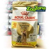 КУЧЕТА | Храна за кучета | Royal Canin Yorkshire Terrier Adult - 500 гр с 500 гр ПОДАРЪК