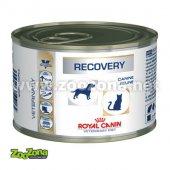 КОТКИ |  | Royal Canin Recovery - консерва при възстановяване, реанимация при кучета и котки