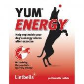 Lintbells YUM Energy Dog - подсилва издръжливостта, 90 таблетки