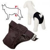 Camon Гащи за женски кучета - 70 см